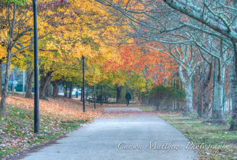 chastain-park-fall-4-of-6