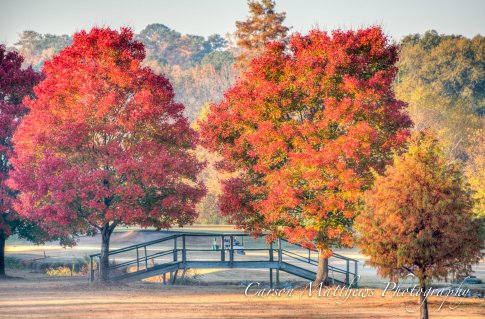 chastain-park-fall-6-of-6