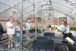 Farm Chastain Green HouseClass-4